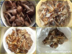 как заморозить грибы