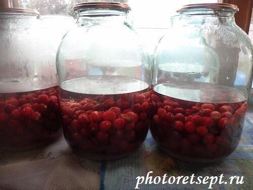 залить пол банки воды в вишневый компот