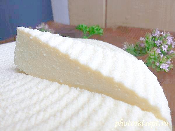 белый домашний сыр