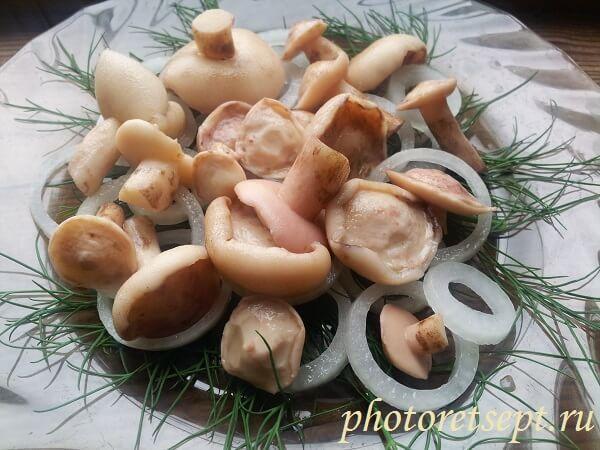 маслята маринованные на зиму рецепт