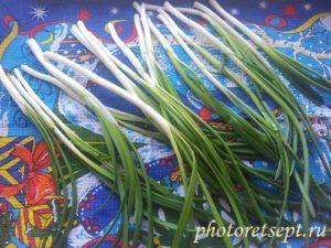 зеленый лук обсушить промыть
