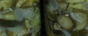 салат переростки огурчики рецепт на зиму