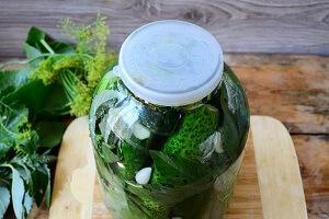 засолка огурцов холодным способом рецепт 1